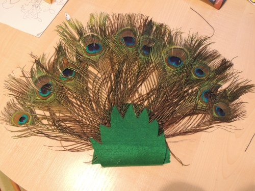 peacock costume how to
