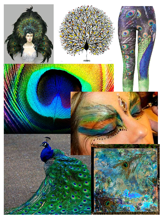 peacock mood board