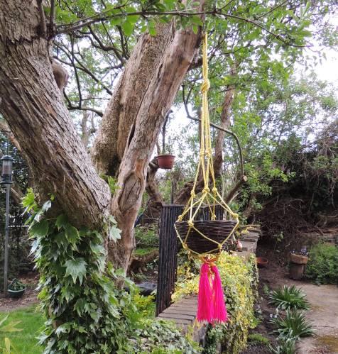 garden sos macrame basket
