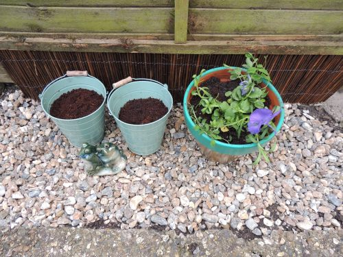 garden sos gravel and pots